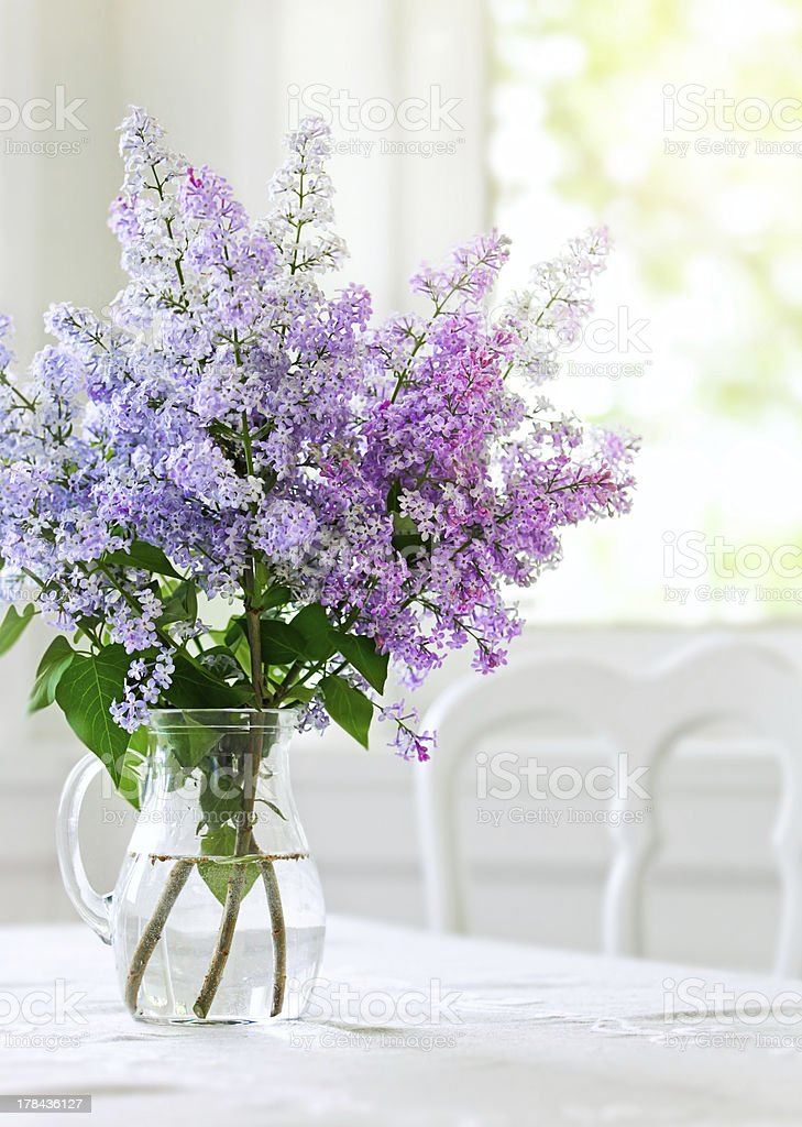bunch lilac flowers in vase on table stock photo