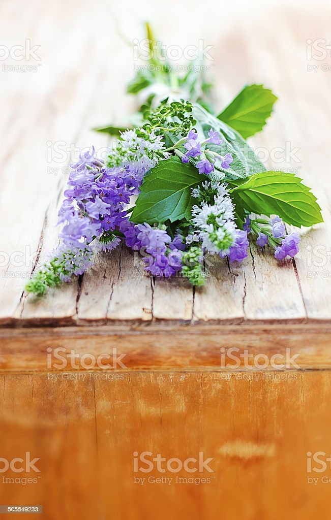 Bunch of aromatic herbs: lavender, sage, mint, thyme stock photo