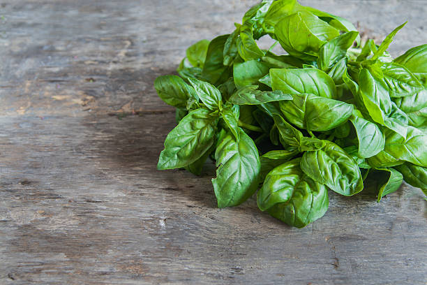 bunch of basil lie on a wooden table background - basil stock photos and pictures