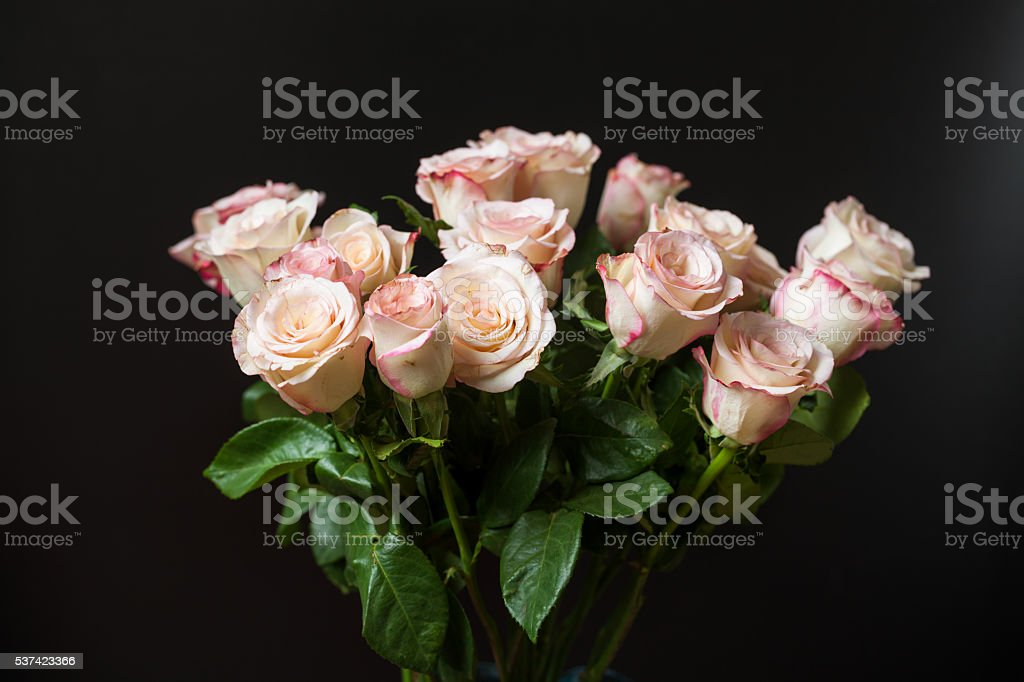 bunch of beautiful golden roses with black background stock photo