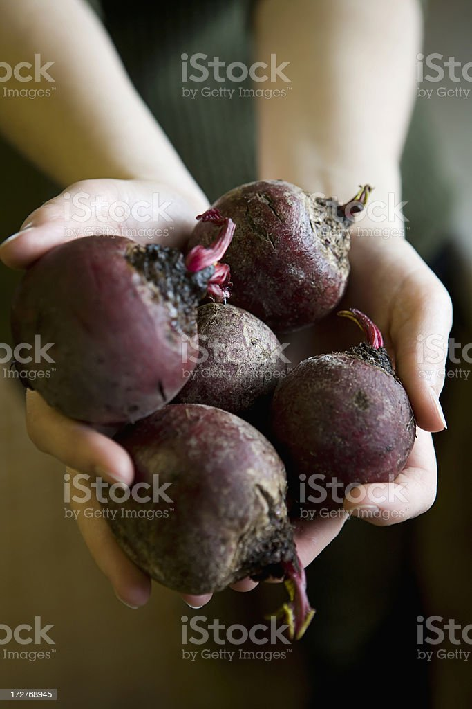 bunch of beets royalty-free stock photo