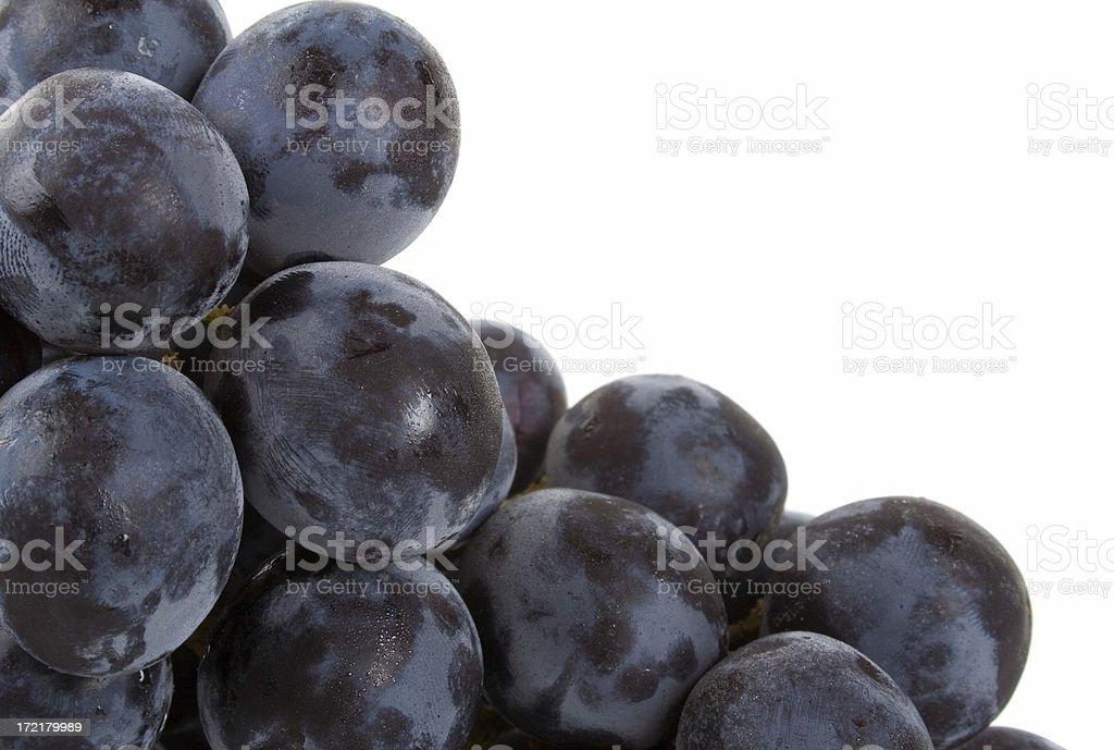 Bunch of Black Grapes macro royalty-free stock photo
