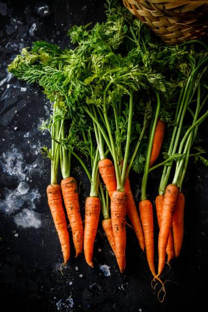 bos van wortelen - wortel plantdeel stockfoto's en -beelden