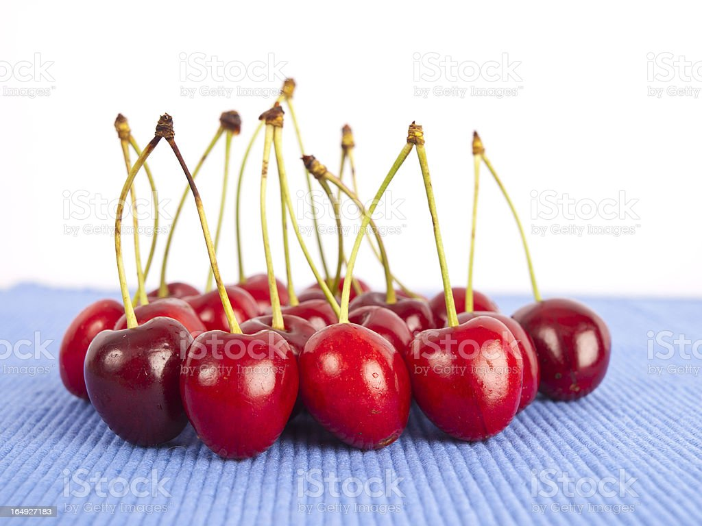 Bunch of cherries royalty-free stock photo