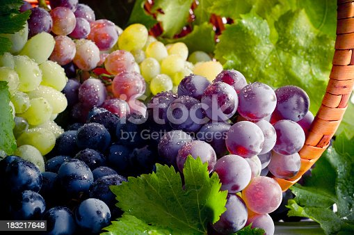 istock Bunch of different types of fresh grapes 183217648