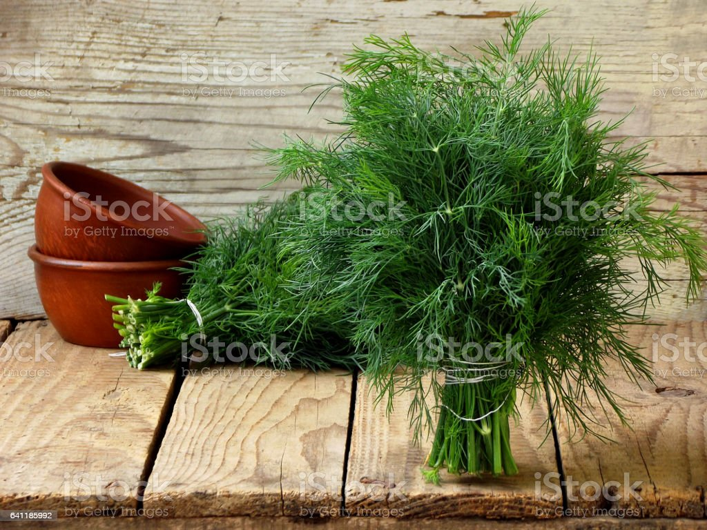 bunch of dill on wooden background stock photo