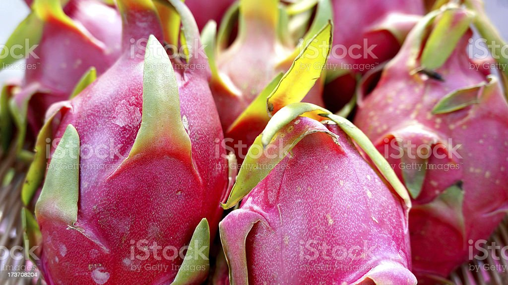 Bunch of Dragon fruit royalty-free stock photo