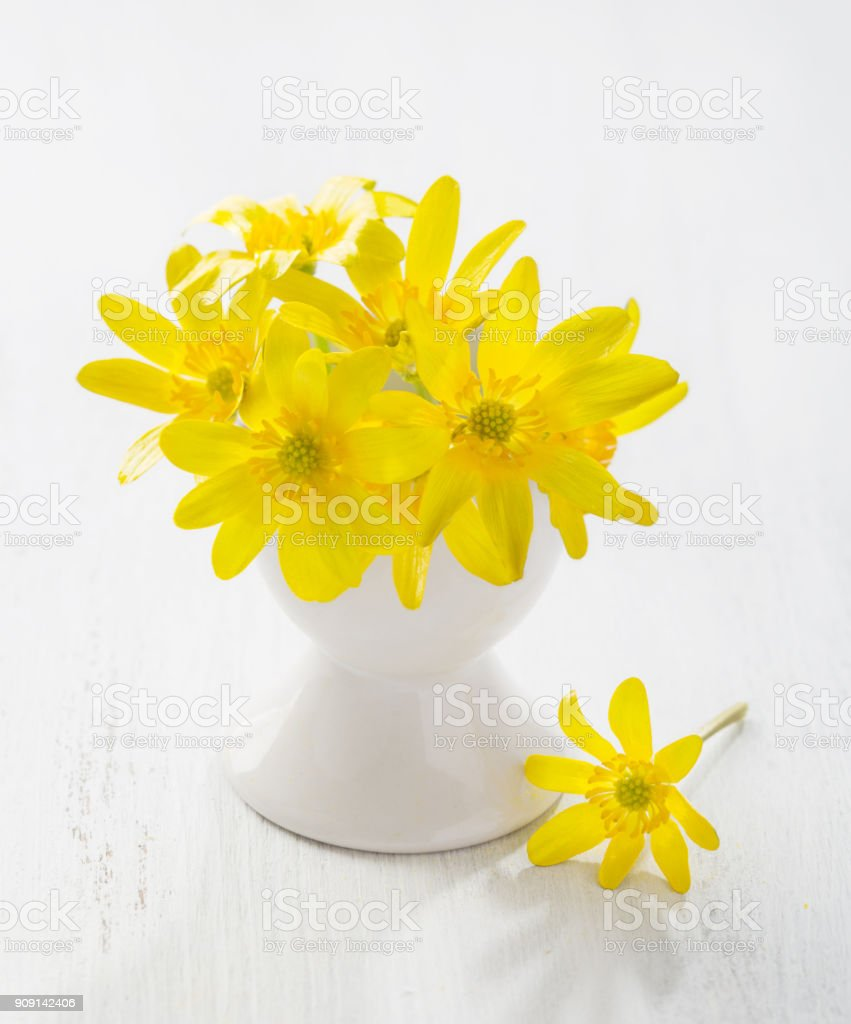 Bunch Of Early Spring Flowers In Stand For Boiled Egg On The White