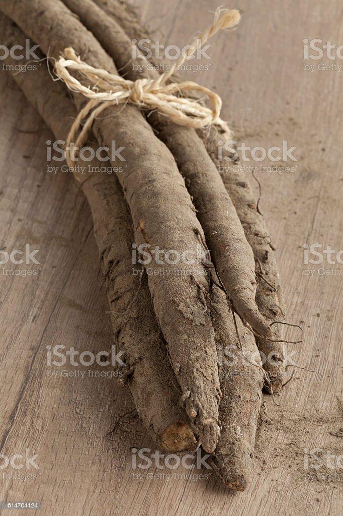 Bunch of fresh burdock taproots - foto stock