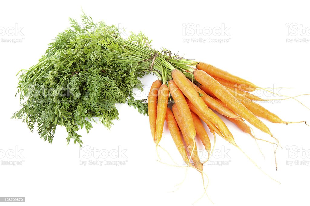 bunch of fresh carrots royalty-free stock photo