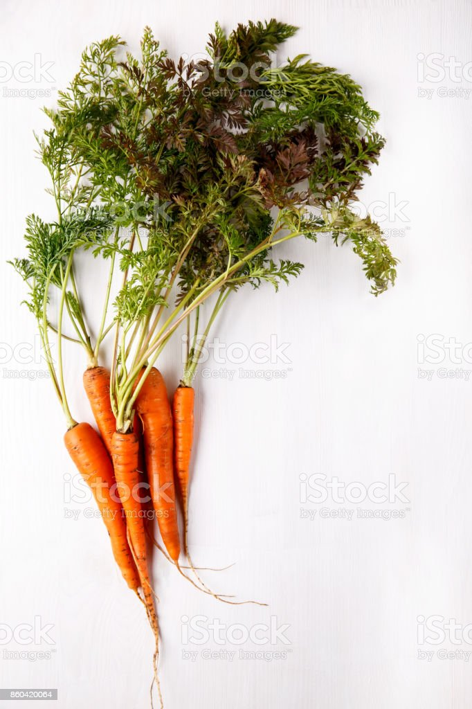 Bunch of fresh carrots with green leaves on white background. Healthy food, vegetables. stock photo