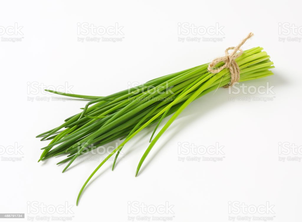 Bunch of fresh chives stock photo