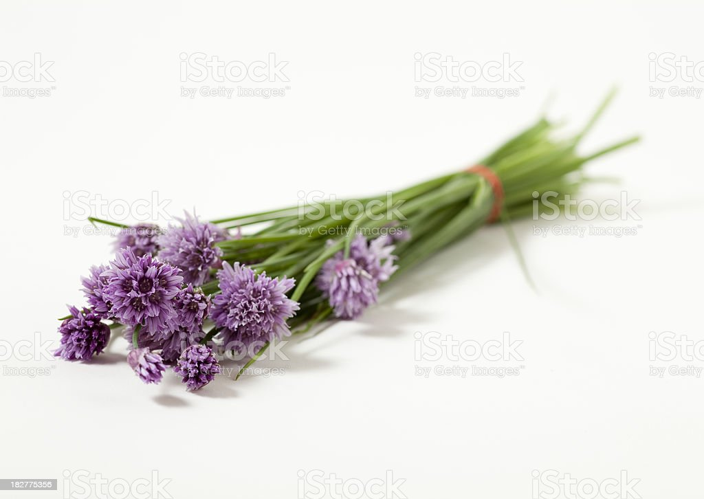 bunch of fresh chives with flowers stock photo