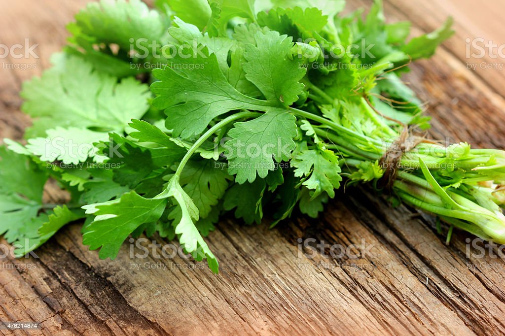 Bunch of fresh coriander on a wooden table stock photo