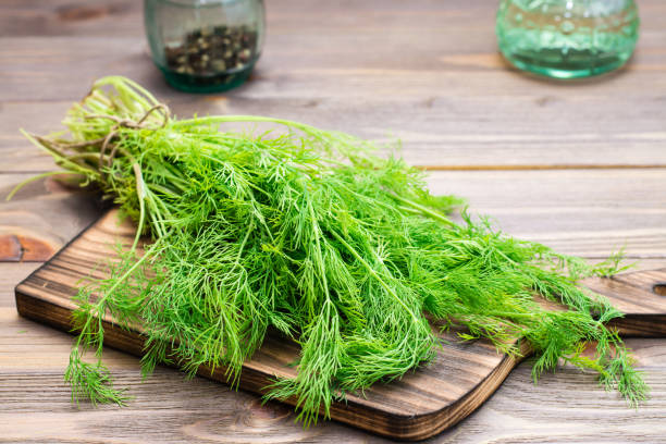 A bunch of fresh dill on a cutting board A bunch of fresh dill on a cutting board on a wooden table dill stock pictures, royalty-free photos & images
