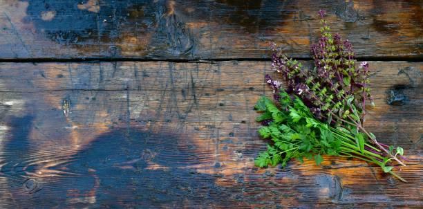Bunch of fresh green parsley and flowering sprigs of purple basil on picture id1285625534?b=1&k=6&m=1285625534&s=612x612&w=0&h=iqru2lyrdg8w0ispurppeqttlggd0rbdh3ayplwl8aq=