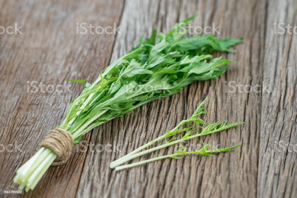 Bunch of fresh Mizuna leaves on wood background. stock photo