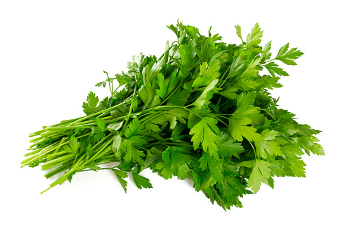 bunch of fresh parsley leafs isolated on white