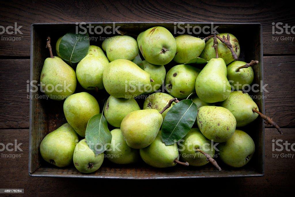 Bunch of fresh pears stok fotoğrafı