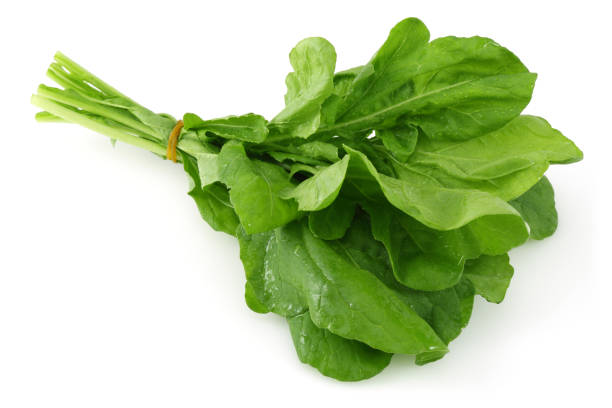 Bunch of fresh rucola isolated on white Bunch of fresh rucola isolated on white background arugula stock pictures, royalty-free photos & images
