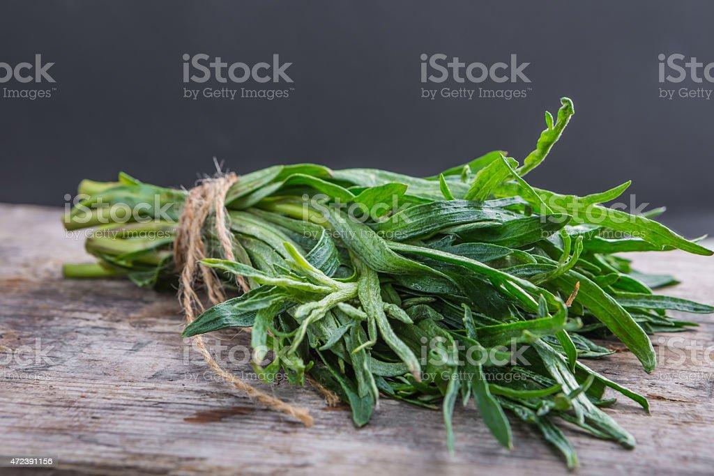 Bunch of fresh tarragon stock photo