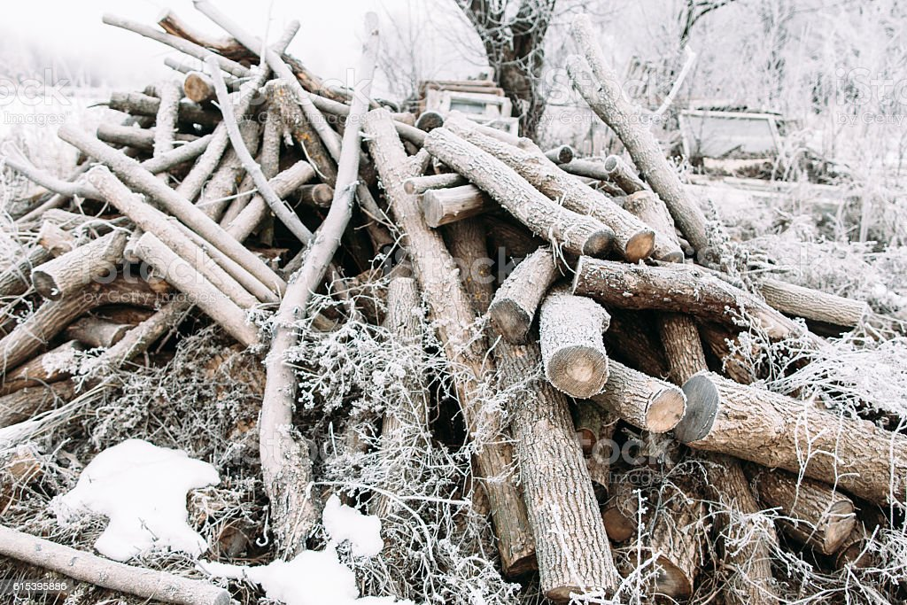Bunch of frosty firewood in yard stock photo