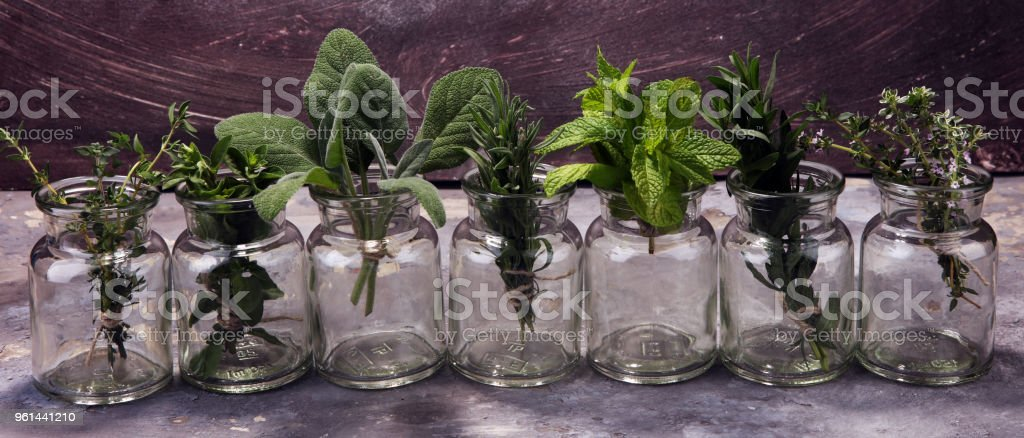 bunch of garden fresh herbs on grey board. organic natural herb.