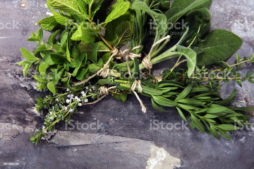 bunch of garden fresh herbs on grey board. organic natural herb.