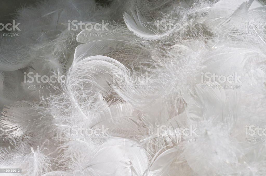 tas dune couette en plumes doie photos et plus d 39 images de 2015 istock. Black Bedroom Furniture Sets. Home Design Ideas