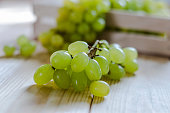 Ripe white grapes on green background