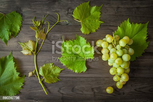 619246768 istock photo bunch of green grapes with leaves 590242736