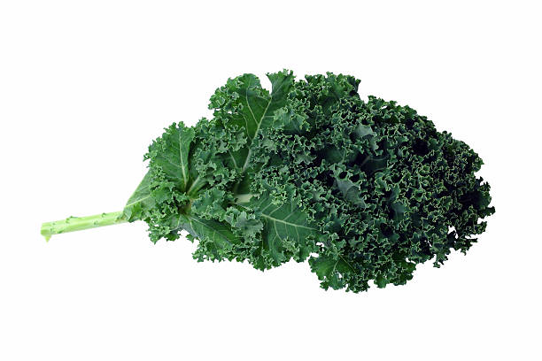 A bunch of green kale on a white background A leaf of green kale. Isolated on white. kale stock pictures, royalty-free photos & images
