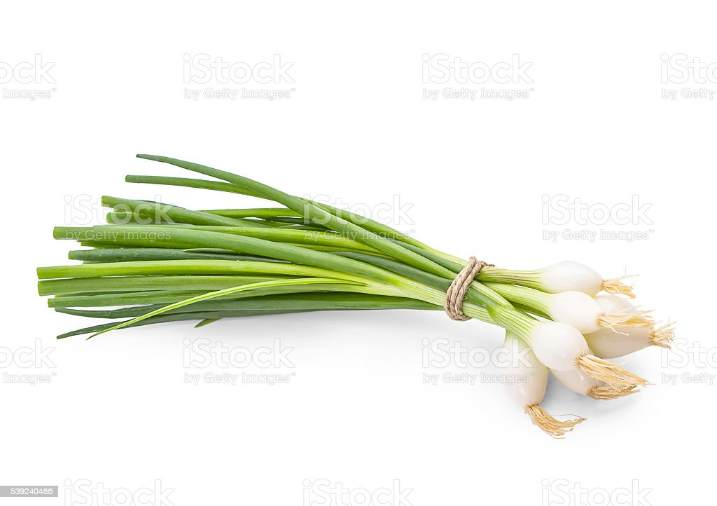 Bunch of green onion on white background royalty-free stock photo