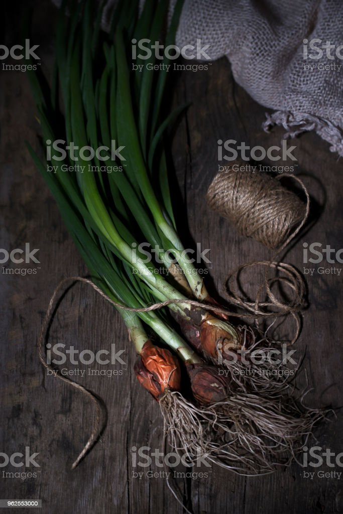 A bunch of green onions with a root on a wooden background - Royalty-free Bouquet Stock Photo