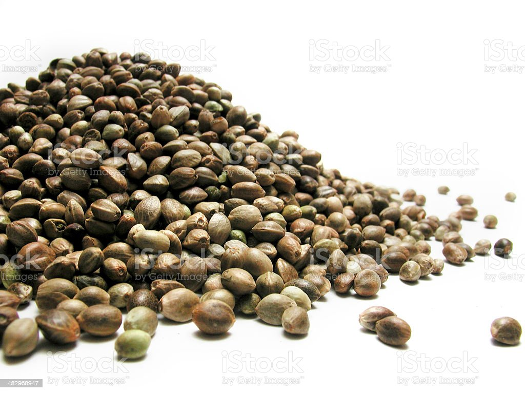 bunch of hemp seeds royalty-free stock photo
