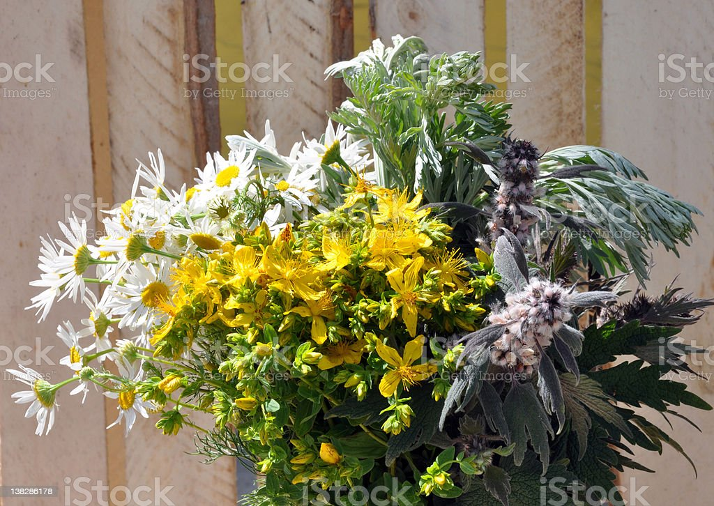 Bunch of herbs royalty-free stock photo