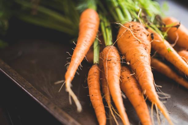 bunch of homegrown organic carrots - cenoura imagens e fotografias de stock