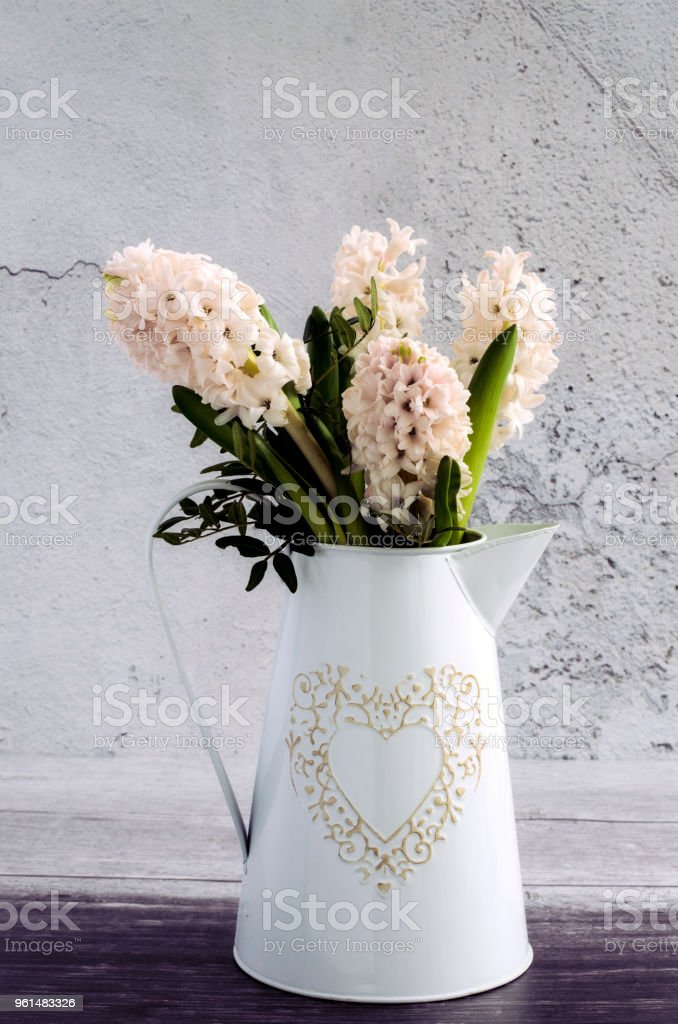 Bunch of Hyacinths in a metal jug stock photo