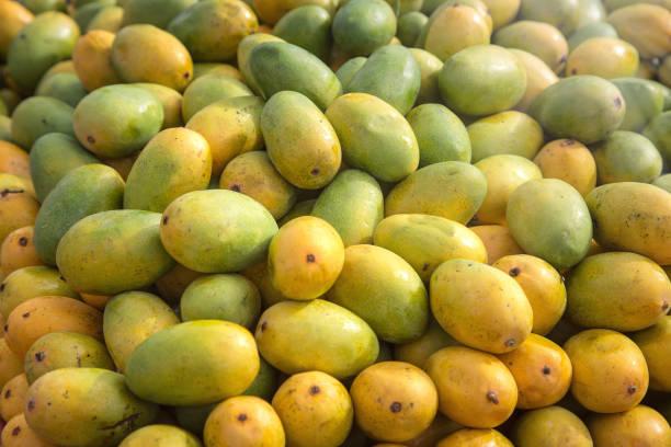 Reihe von indischen Mangos – Foto