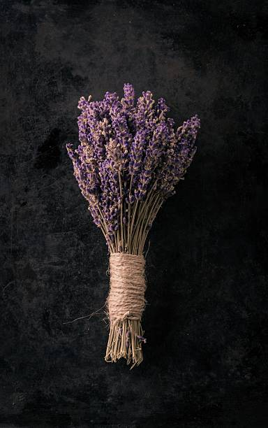 Bunch of lavender flower on black tray stock photo