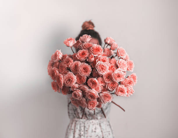 Bunch of Living Coral roses Bouquet in female hands. Bunch of Living Coral roses. Color of year 2019 Living Coral concept. rose flower stock pictures, royalty-free photos & images