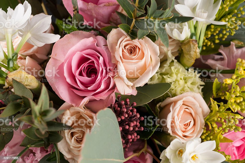 Bunch of multicolor flowers. stock photo