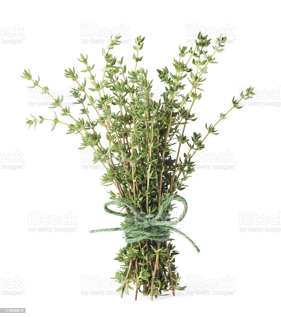 Bunch of organic thyme stock photo