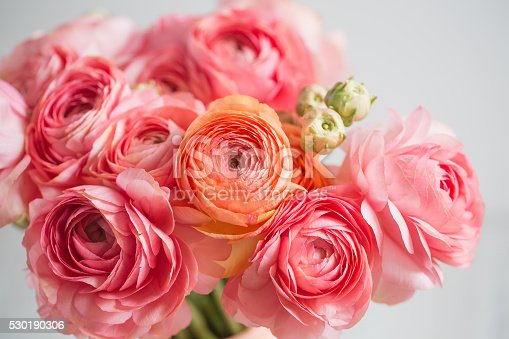 bunch of pale pink ranunculus persian buttercup light background, wooden surface. glass vase.  spring, summer