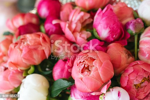 Pile of pink peony flowers