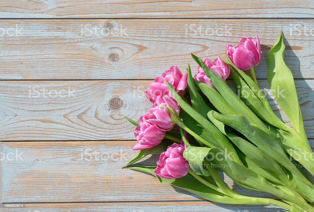 Bunch of pink tulips on old wood with empty space royalty-free stock photo