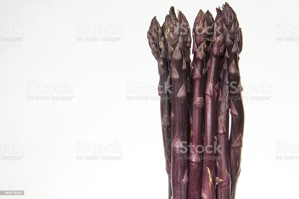 Bunch of Purple Asparagus stock photo