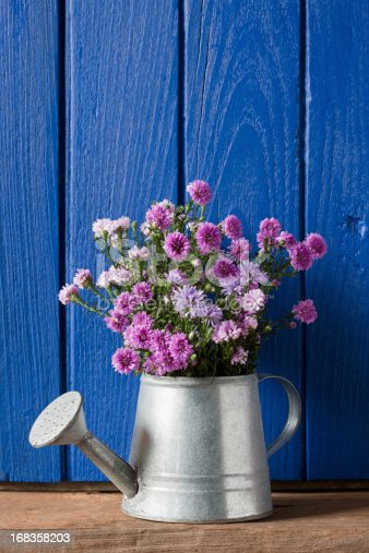 Colorful wildflowers sitting in a metal watering can.  The flowers are placed in front of a blue wooden window shutter.