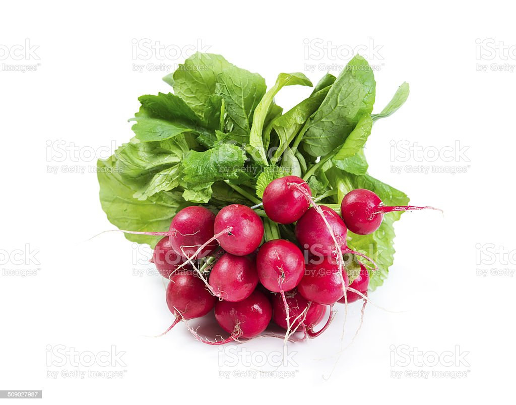 Bunch of radishes stock photo