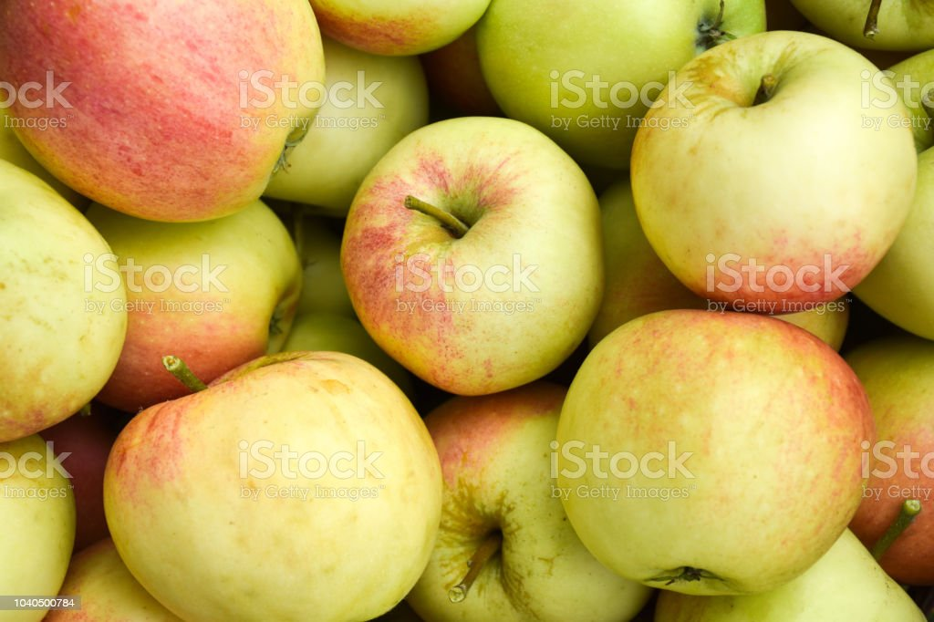 Bunch of red and yellow apples stock photo